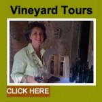 z1vineyardtours