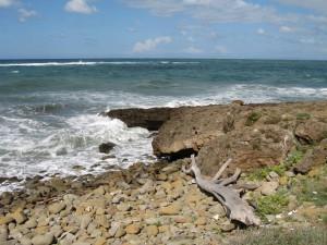coastaltuscany